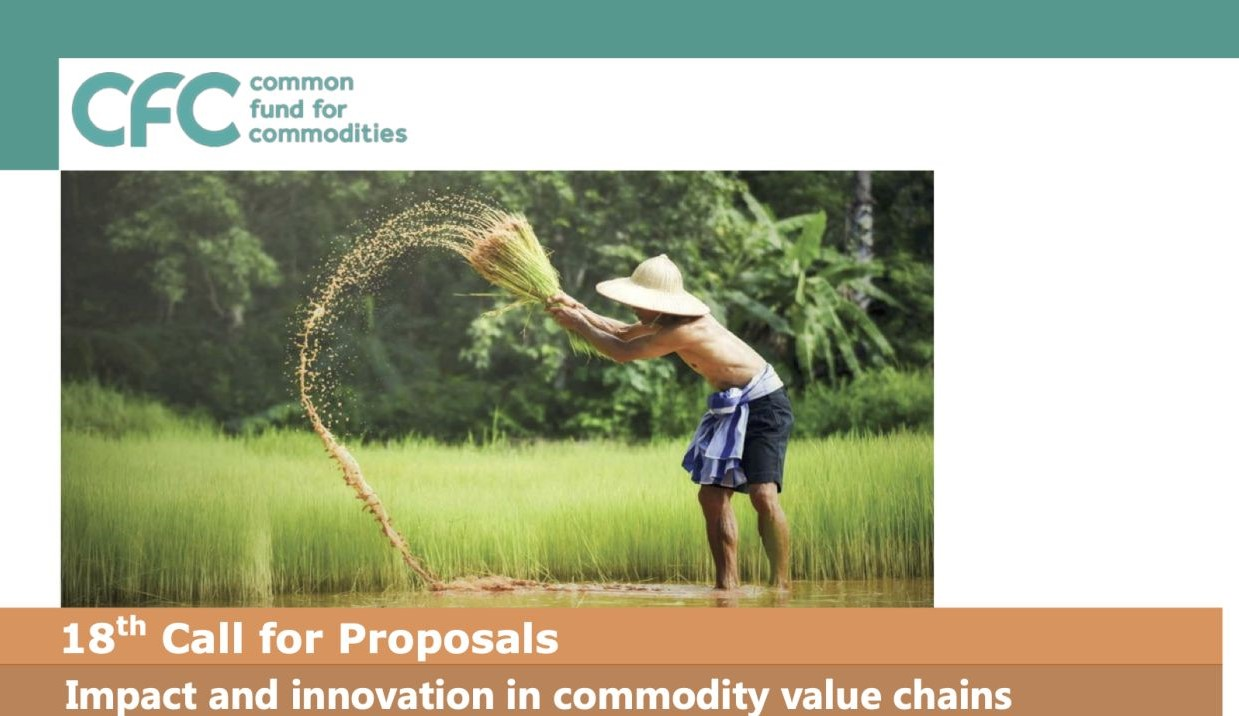 Call for Proposals: Impact and Innovation in Commodity Value Chains